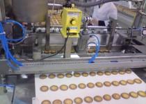 Linia do produkcji biszkopta z galaretką