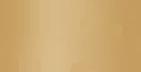 wisla logo